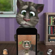 talking tom cat 2 бесплатно и без регистрации